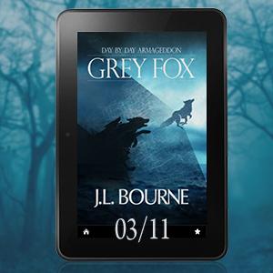 greyfox_300x300